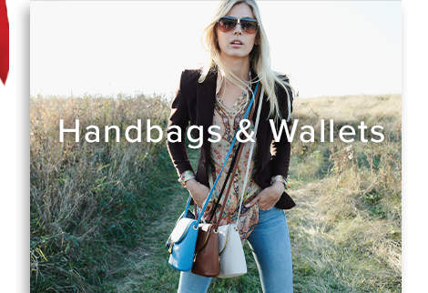 Handbags and Wallets